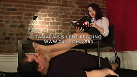 Tamara's Silent Reading - www.clips4sale.com/8983/15945566